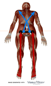 Skiing Position : Rounding the Back and Shoulders to Ski Well